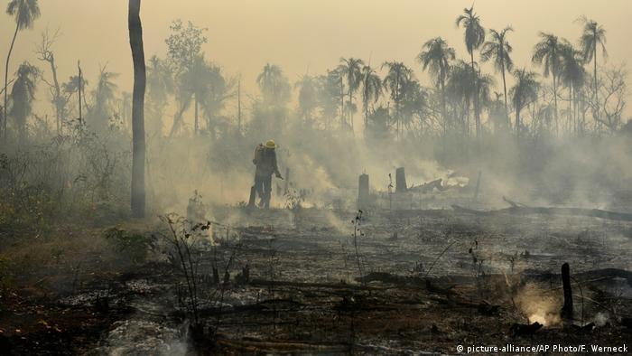 Imagem de bombeiro em meio a floresta queimada no Maranhão, cheia de fumaça e focos de incêndio