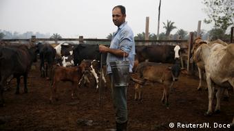 Brasilien Rinderfarm