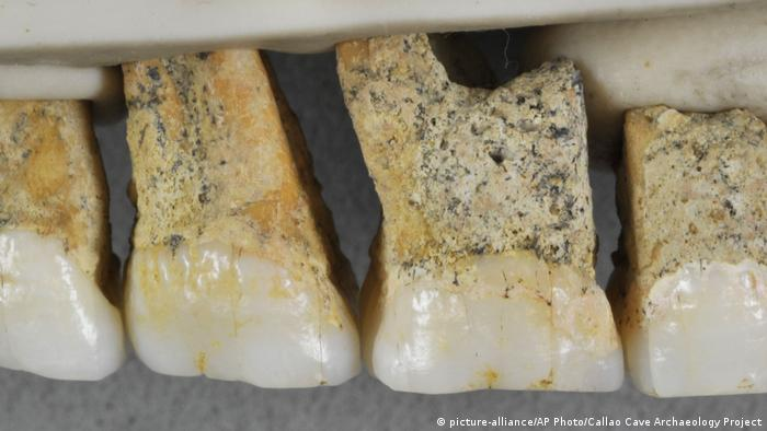 Menschlischer Verwandter Homo Luzonensis (picture-alliance/AP Photo/Callao Cave Archaeology Project)