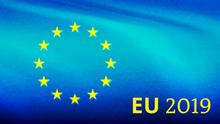 EU 2019 Wahl Pictureteaser - Deutsch Englisch