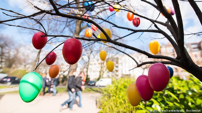 Colored eggs hanging from a tree