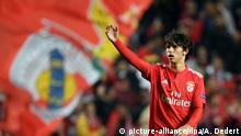 Fußball UEFA Europa League Benfica Lissabon - Eintracht Frankfurt
