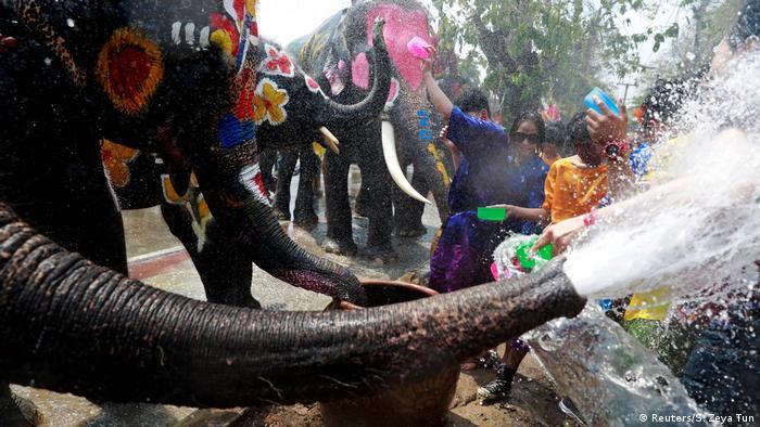 Elephants spraying water at the Songkran festival