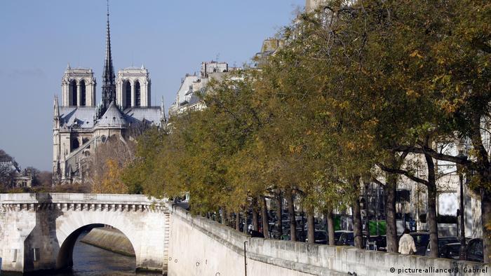 Vista de Notre-Dame com árvores à frente