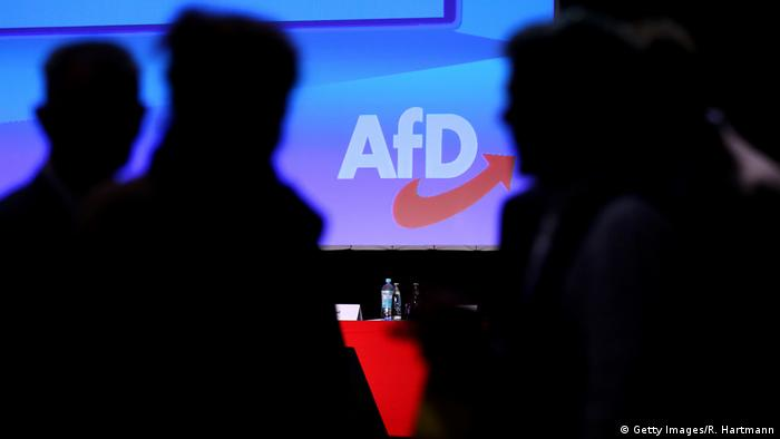 Deutschland Symbolbild AfD (Getty Images/R. Hartmann)