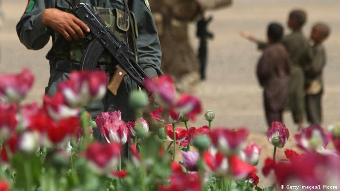 Afghanistan - Polizeieinheit hinter Opiumfeld (Getty Images/J. Moore)