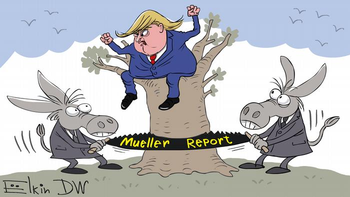 Трамп сидит на дереве, которое пилят ослы (осел - символ Демократической партии)