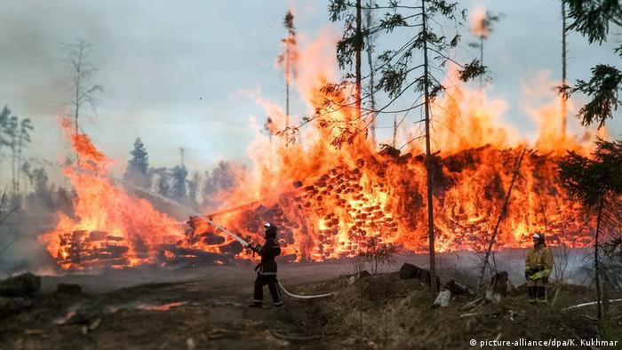 Німецький професор про пожежі у Сибіру: Світ вступає в епоху вогню ...
