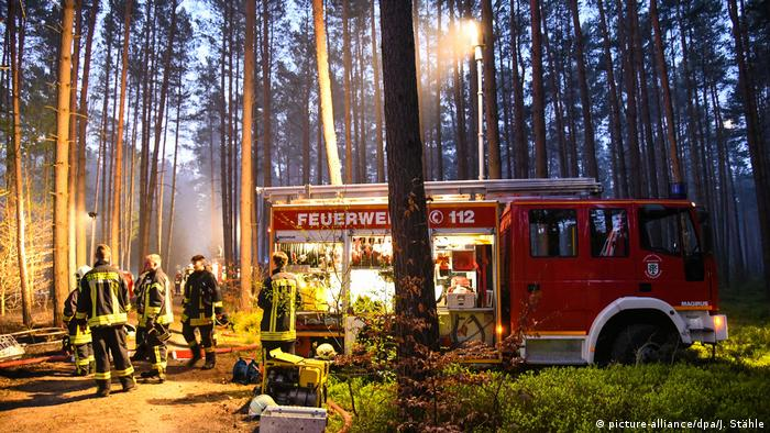 Firefighters in Oranienburg woods (picture-alliance/dpa/J. Stähle)