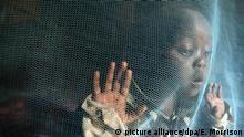 Medizin Forschung l Weltweit erste Malaria-Impfkampagne l Moskitonetz