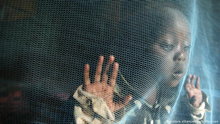 A child stands behind a mosquito net