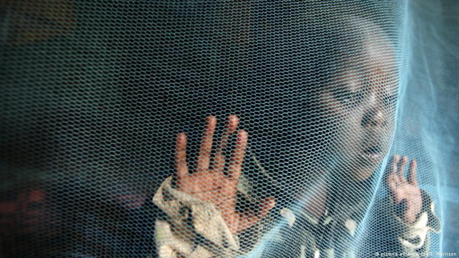 """منظمة الصحة العالمية: القضاء على الملاريا """"قابل للتنفيذ"""" ولكن.."""