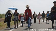 Central American migrants traveling in a caravan to the U.S. border walk on the highway through Tonala, Chiapas state, Mexico, Sunday, April 21, 2019. The outpouring of aid that once greeted Central American migrants as they trekked in caravans through southern Mexico has been drying up, so this group is hungrier, advancing slowly or not at all, and hounded by unhelpful local officials. (AP Photo/Moises Castillo) |