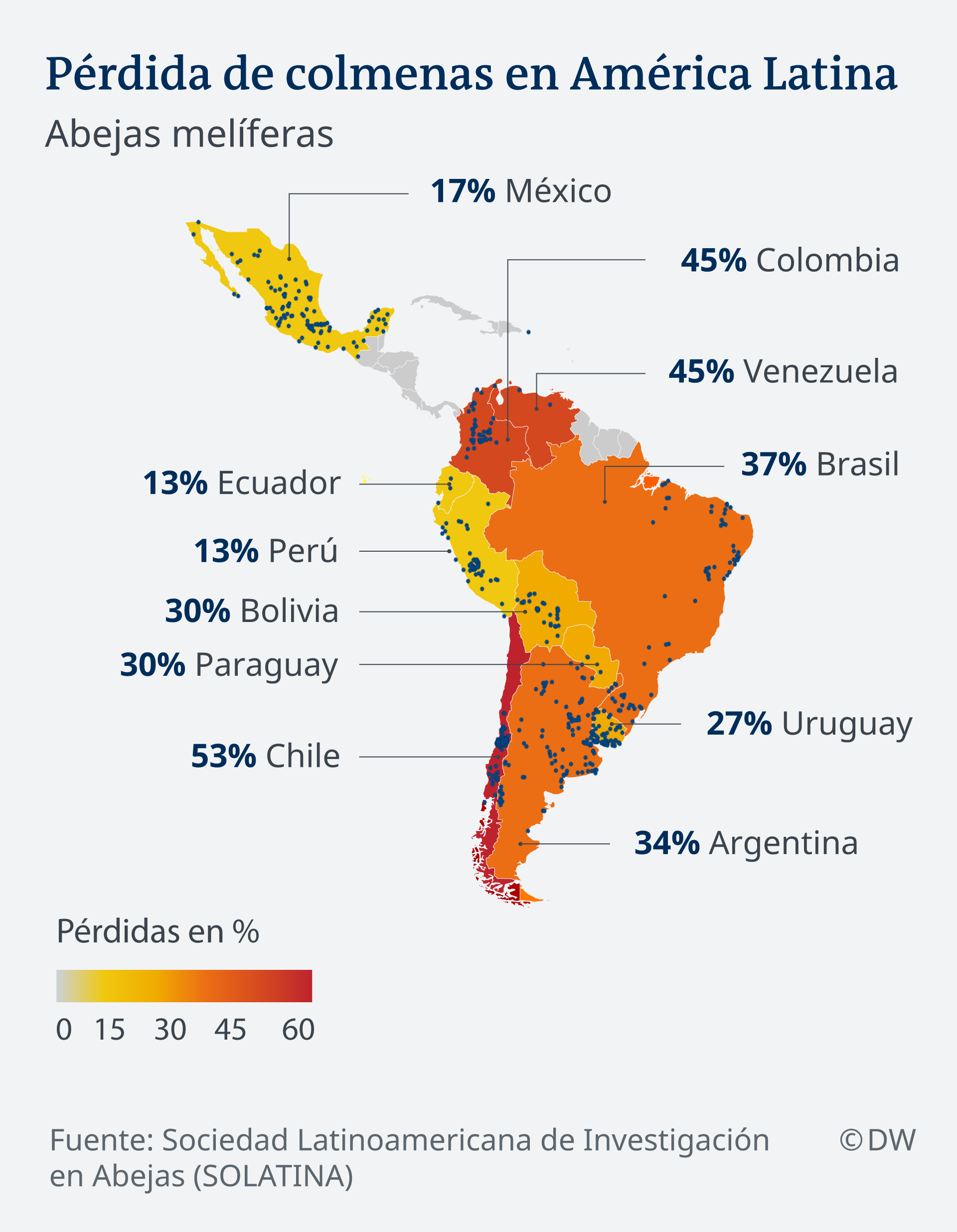 Infografik Karten Bienenstockverlust in Lateinamerika ES