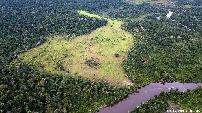 Brasilien l Zerstörung des Regenwaldes in Para (Misereor/Florian Kopp)