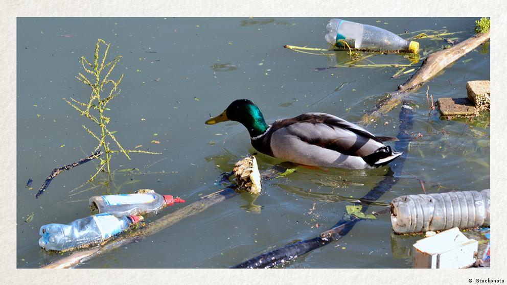 Deutschkurse | Wortschatz | WBS_Foto_Umweltbelastung