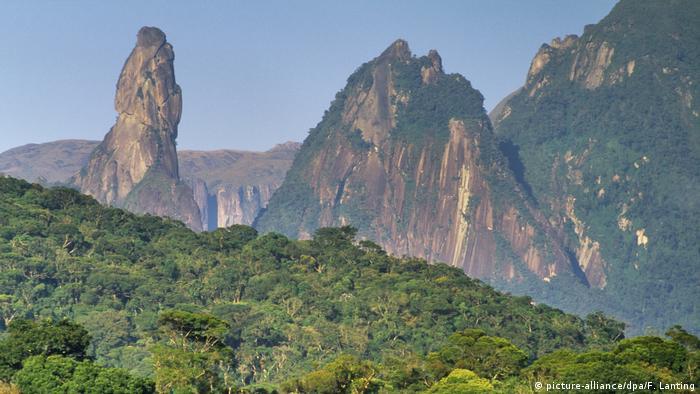 Regenwald Serra dos Orgaos National Park Brasilien
