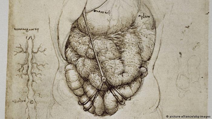 Obra de Leonardo da Vinci.