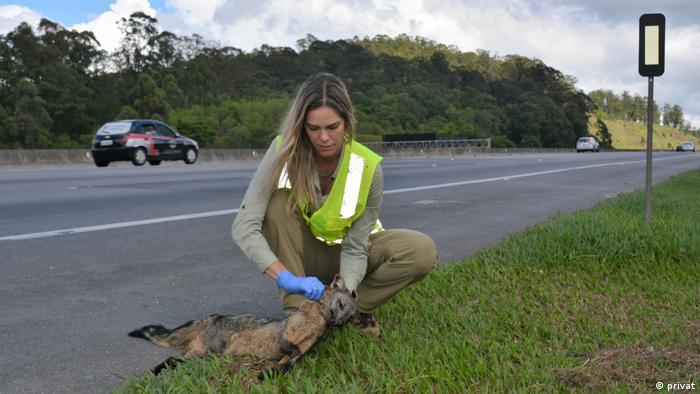 Bióloga Fernanda Abra com animal atropelado