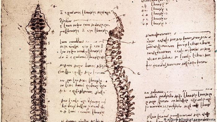 Obras de Leonardo da Vinci.
