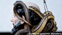 A statue of Saint Domenico covered with live snakes is carried by faithfuls during an annual procession in the streets of Cocullo, a small village in the Abruzzo region, on May 1, 2019. (Photo by Filippo MONTEFORTE / AFP) (Photo credit should read FILIPPO MONTEFORTE/AFP/Getty Images)