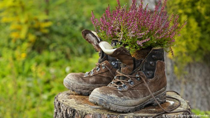 old walking boots with plants in them (picture-alliance/imageBroker)
