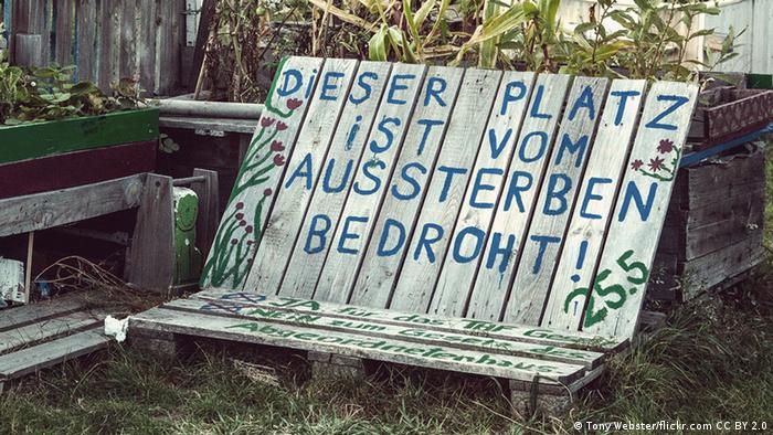Das Urban-Gardening-Projekt Allmende Kontor auf dem Tempelhofer Feld (Tony Webster/flickr.com CC BY 2.0)