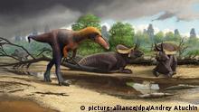 SPERRFRIST BEACHTEN! *** Forschung Entdeckung neue Dinosaurier-Art Suskityrannus hazelae