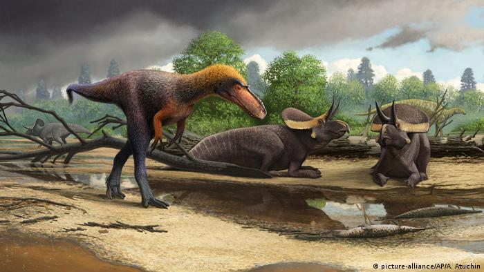 A drawn image of a new relative of the Tyrannosaurus rex