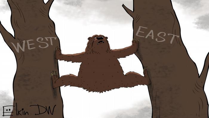 Медведь застрял в шпагате между двумя деревьями, на которых написано Запад и Восток