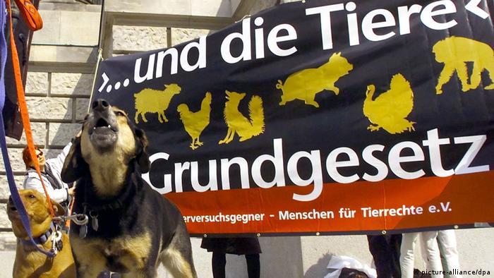 Perros ladrando ante una pancarta, donde se solicita la inclusión de los derechos de animales en la Ley Fundamental.