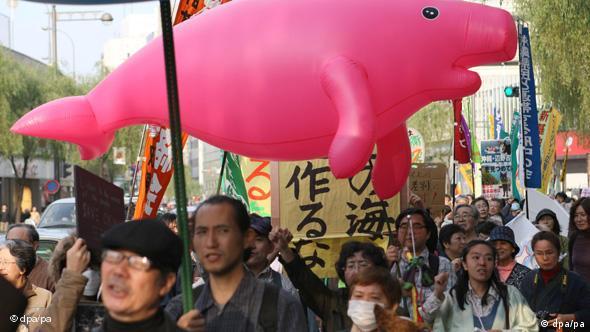 Tausende Japaner demonstrieren gegen US-Militärstützpunkte Flash-Galerie