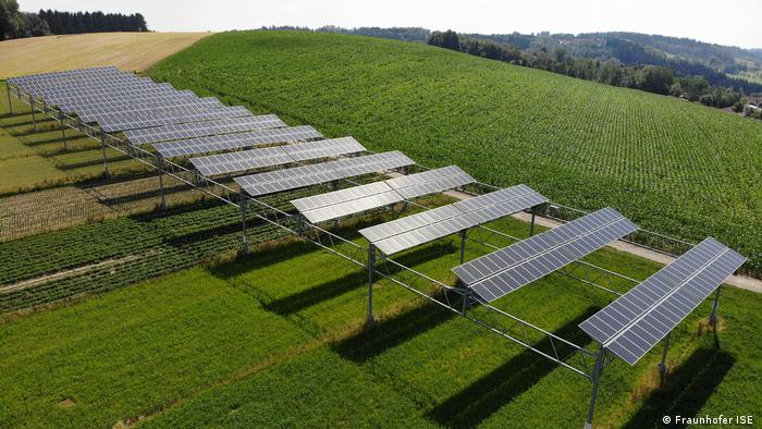 Agrophotovoltaik-Anlage in Heggelbach am Bodensee (Foto: Fraunhofer ISE )