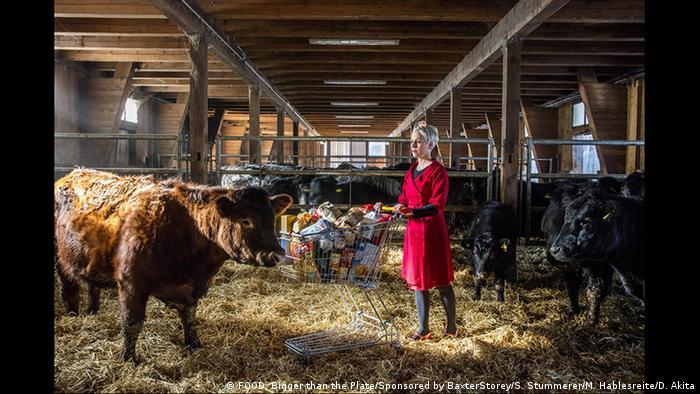 Жінка у червоному пальто стоїть у хліві з коровами з візком для закупів, повним продуктів