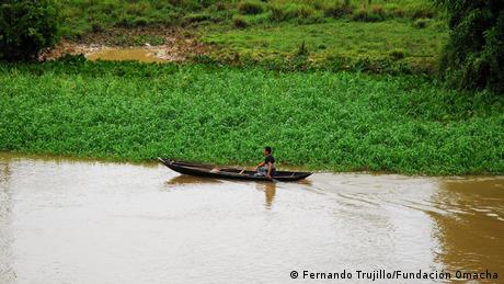 Biodiversität in Venezuela (Fernando Trujillo/Fundación Omacha)