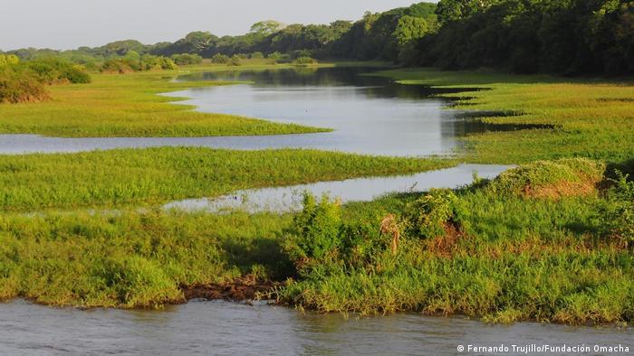Landschaft am Orinoco-Becken.
