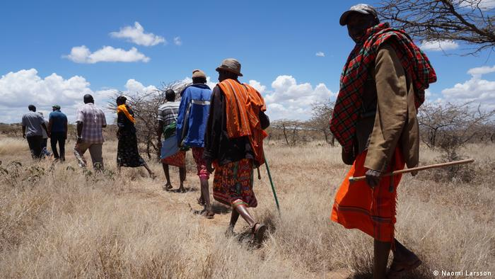 A group of people walking in the bush