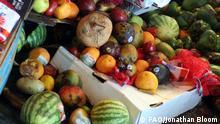 FAO - Verschwendung von Lebensmitteln