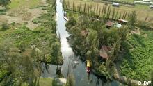 Mexiko Veracruz Mangroven-Anpflanzungen