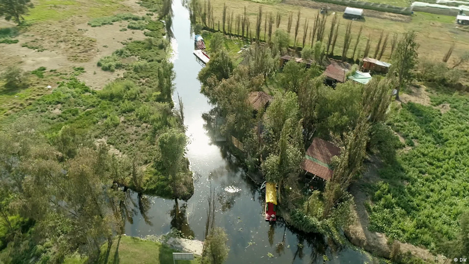 Los mexicanos recurren a una técnica ancestral azteca para revivir los manglares