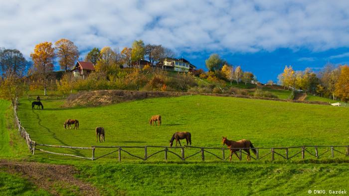 Naturpark Bilogora in Kroatien