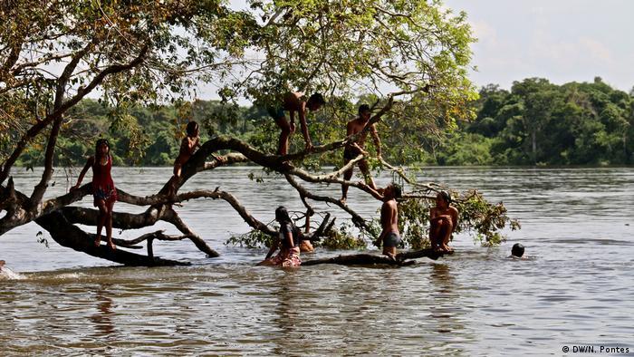 Índios tomam banho no rio, perto de uma ávore que tem galhos sobre a água