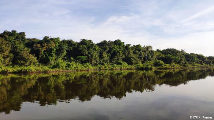 Rio com árvores nas margens. As ávores refletem na água.