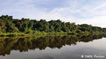 Brasilien Amazonas Regenwald und Xingu Fluss