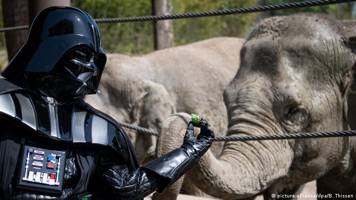 Darth Vader feeding an elephant (picture-alliance/dpa/B. Thissen)