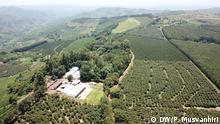 Simbabwe Farfell Coffee Estate, Chipinge