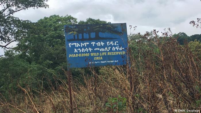 Äthiopien Maokamo Waldgebiet