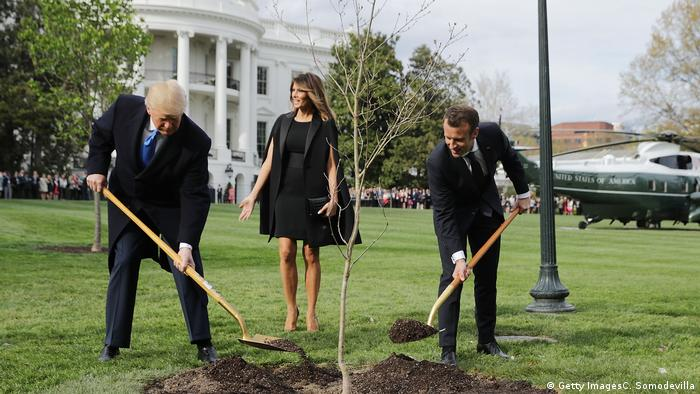 Trump and Macron plant the tree together
