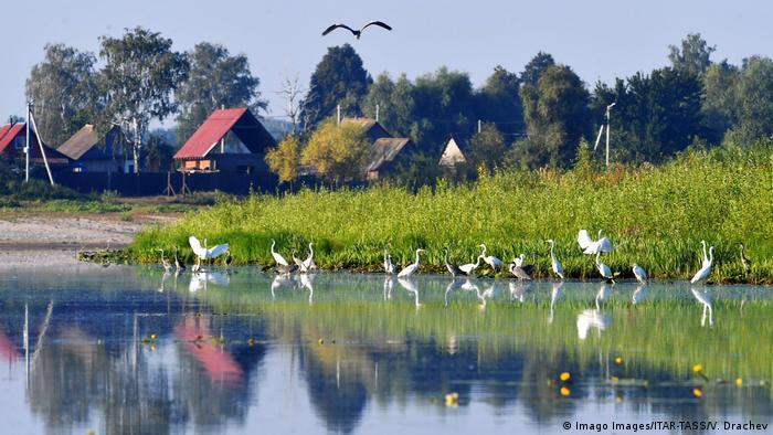 Weißrussland | Fluss Prypjat
