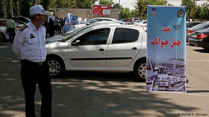 Iranische Polizei konfisziert Autos, in dem Hunde durch die Stadt transportiert werden (MIZAN/ H. Shirvani)